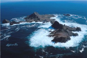 "The Farallon Islands – ""California's Galapagos"""