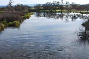 Restoration of the San Joaquin River