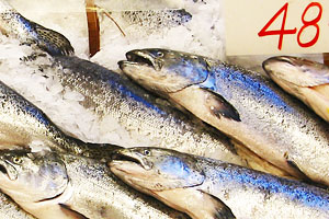 Wild Prices for Wild Salmon
