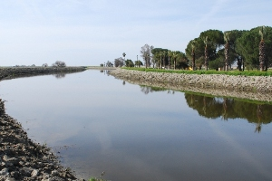 Web Extra: Restoration of the San Joaquin River Slideshow