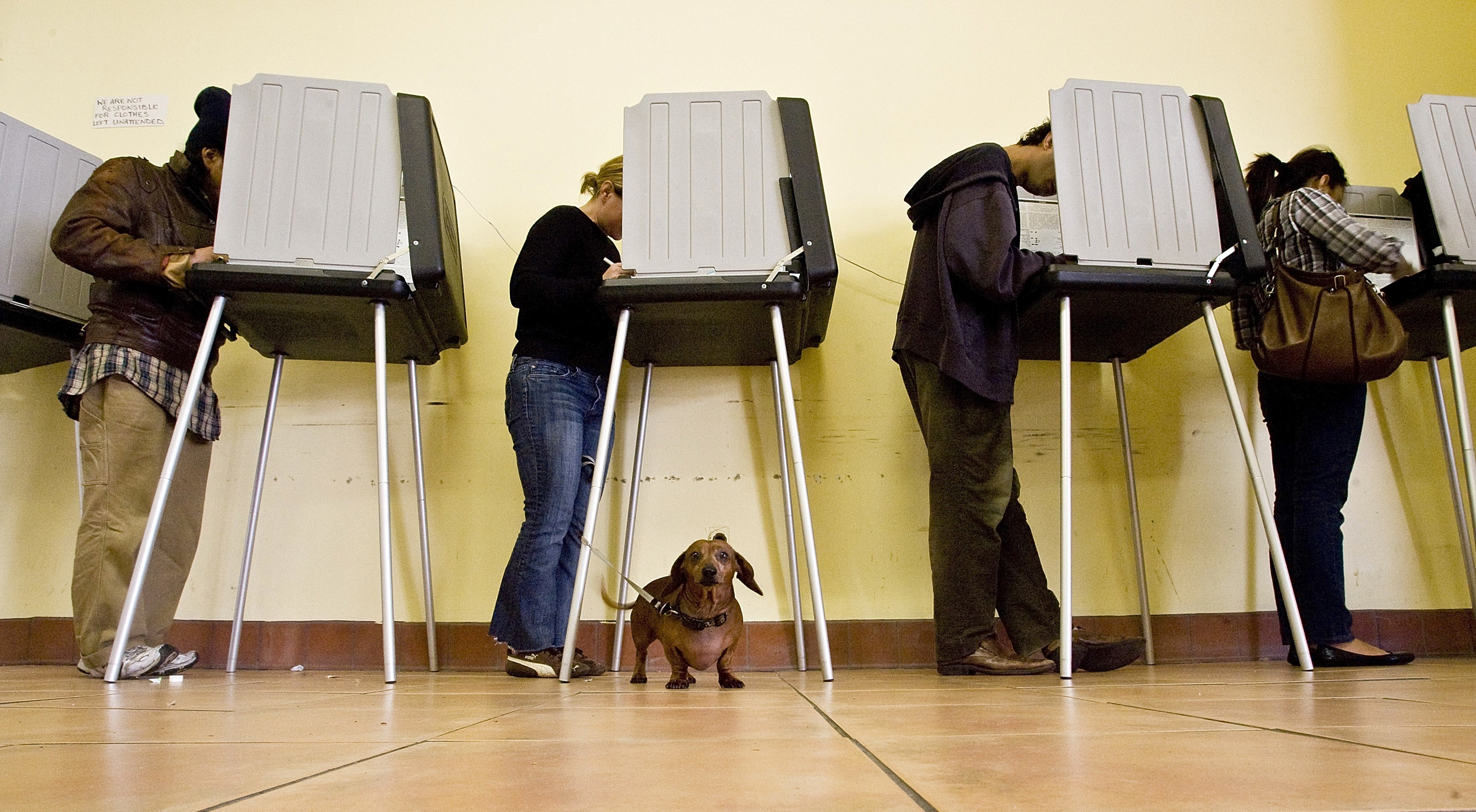 Voters at a polling place in San Francisco. (David Paul Morris/Getty Image)