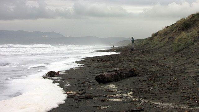 Ocean Beach is shrinking as the sea rises. (Nicholas Christen/KQED)