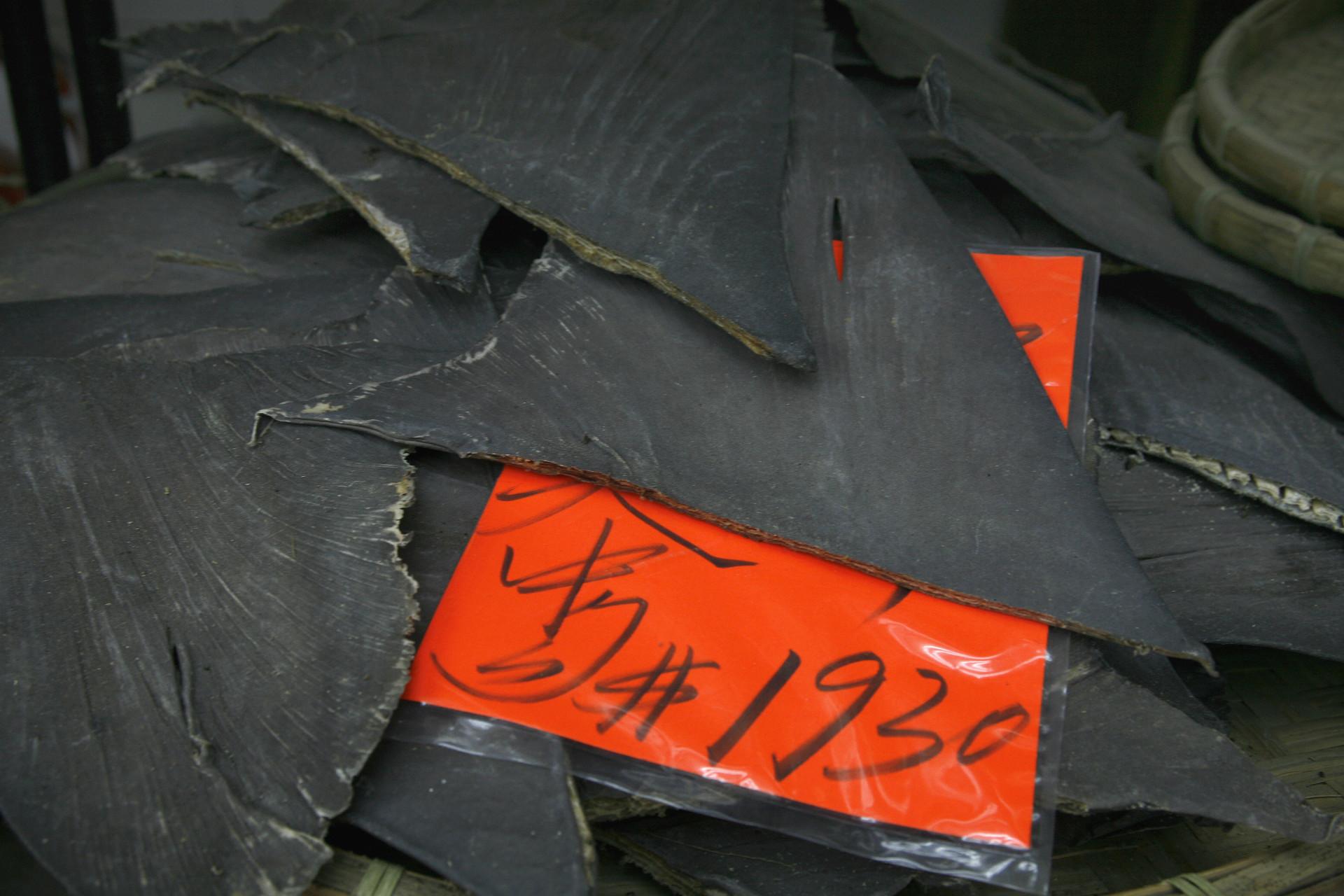 Shark fins await sorting in a Hong Kong warehouse.