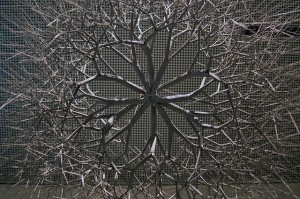 One of Ruth Asawa's sculptural works, on display at the de Young Museum. (donnjmck/Flickr)