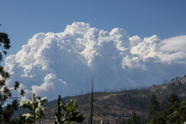 Smoke from the Rim Fire rises above a ridge in Yosemite National Park on Wednesday, Aug. 21. The view is across an area of the park that burned several years ago. (Dan Brekke/KQED)