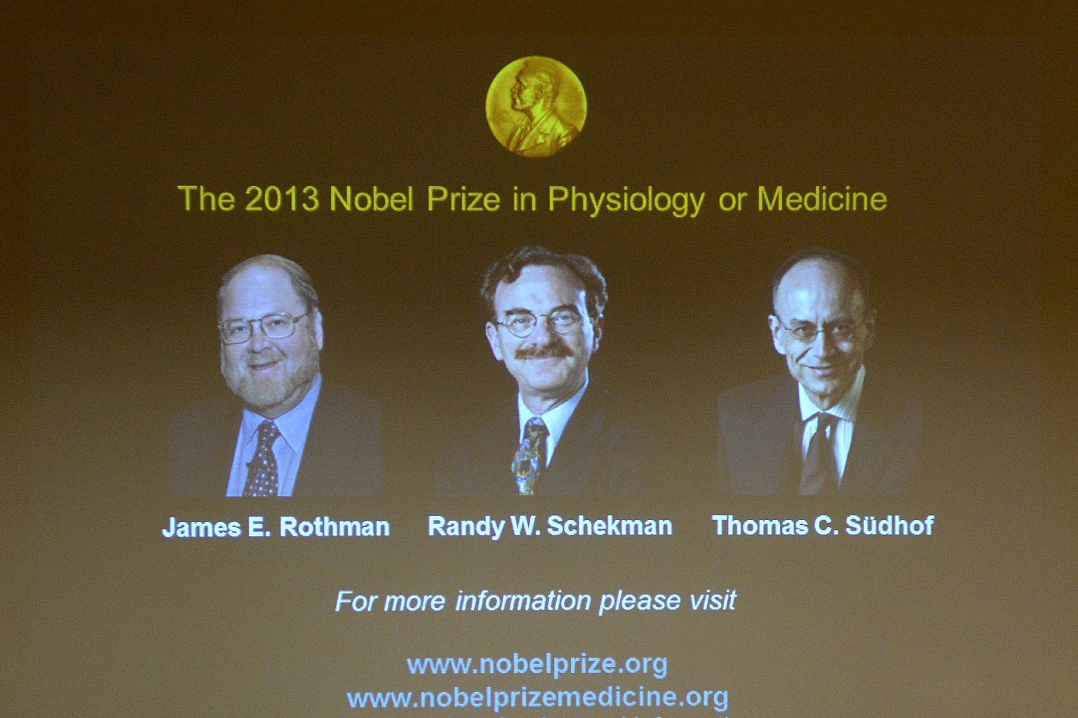 A screen displays photos of, from left, James E. Rothman of Yale, Randy Schekman of UC Berkeley, and Thomas Südhof of Stanford. The trio is awarded the Nobel Prize for Medicine or Physiology for their discoveries of machinery regulating vesicle traffic, a major transport system in cells. (Jonathan Nackstrand/AFP-/Getty Images)
