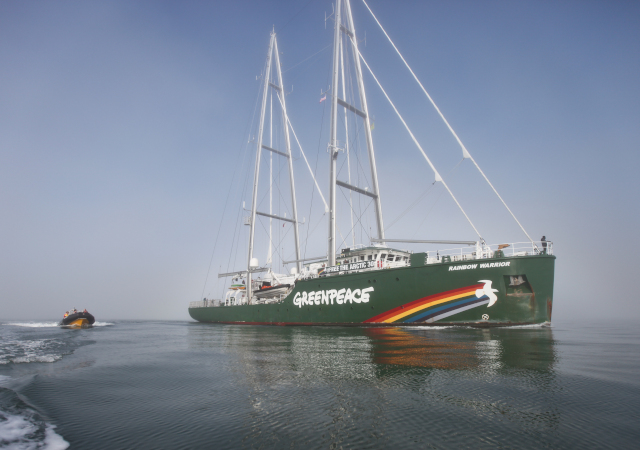 Greenpeace members motor out in a small boat to greet the Rainbow Warrior III as it enters a foggy San Francisco Bay on Friday, November 8. (Deborah Svoboda / KQED)
