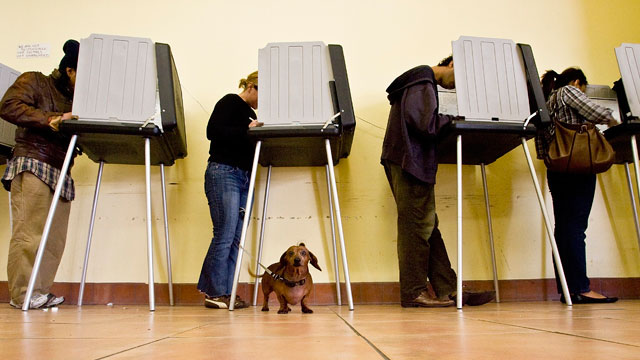 Election officials forecast low voter turnout for San Francisco's election. (David Paul Morris/Getty)