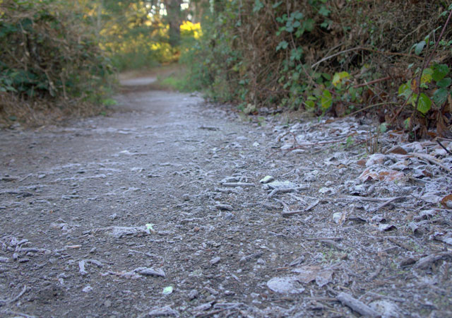 ICE-path