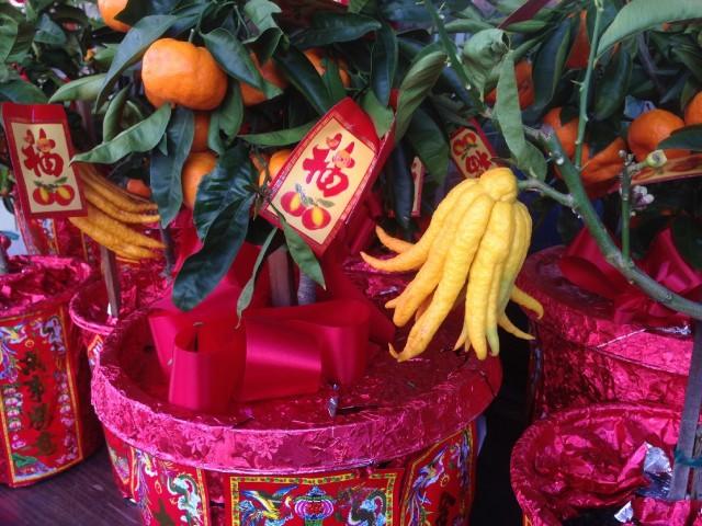 Buddha's hand and other citrus fruits could be found all over San Francisco's Chinatown on Jan. 30, the eve of the Lunar New Year. (Patricia Yollin/KQED)