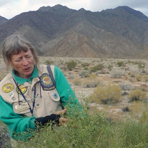 Anza-Borrego Desert State Park volunteer Karin Vickars. (Lisa Morehouse/KQED)