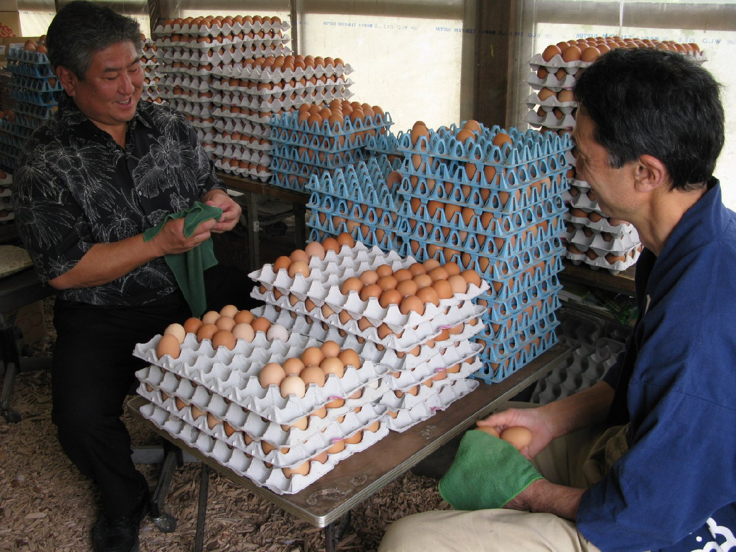 Famed Hawaii chef Alan Wong checks out some of Tadaaki Hachisu's eggs in Japan. (Photo by Dan Nakasone)