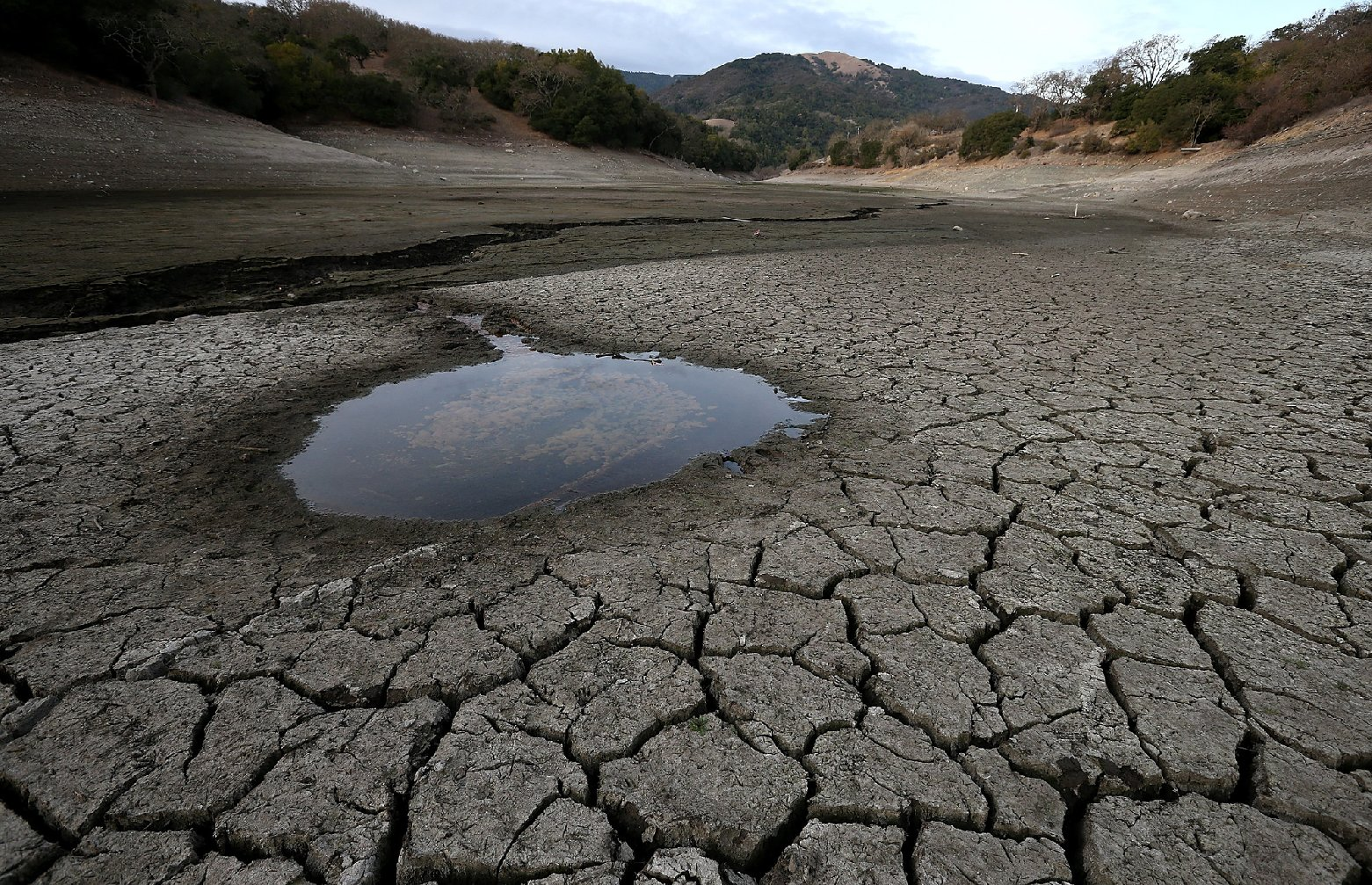A small pool of water is surrounded by dried and cracked earth that was the bottom of the Almaden Reservoir in San Jose in late January. (Justin Sullivan/Getty Images)