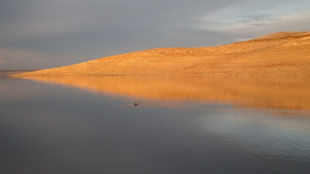 Low water levels in San Luis Reservoir, on western edge of San Joaquin Valley, in February 2014. (Josh Cassidy/KQED)