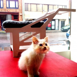 A custom-made cat bed pays homage to the Port of Oakland's iconic cranes.  (Adam Myatt/Cat Town Cafe)