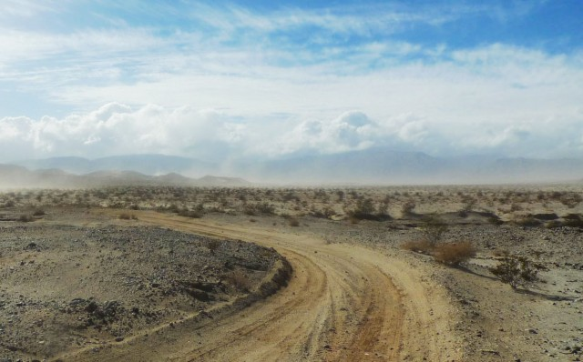 A dry, windy afternoon in Anza-Borrego Desert State Park. (Lisa Morehouse/KQED)