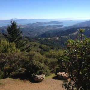 A sweeping view of the bay is visible from the Old Railroad Grade, near Mesa Station. (Grace Rubenstein/KQED)