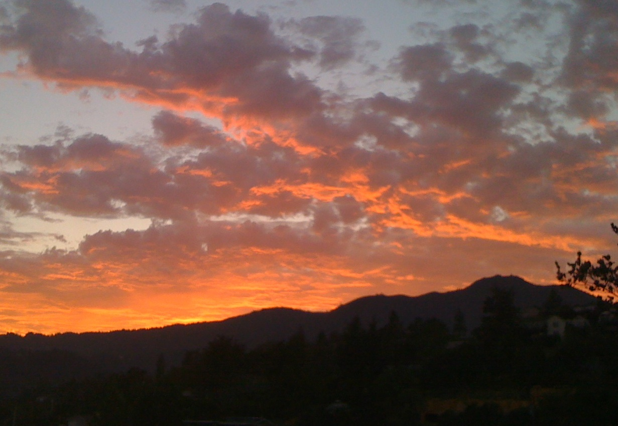 Mt. Tamalpais, seen from Mill Valley at sunset (Grace Rubenstein/KQED)