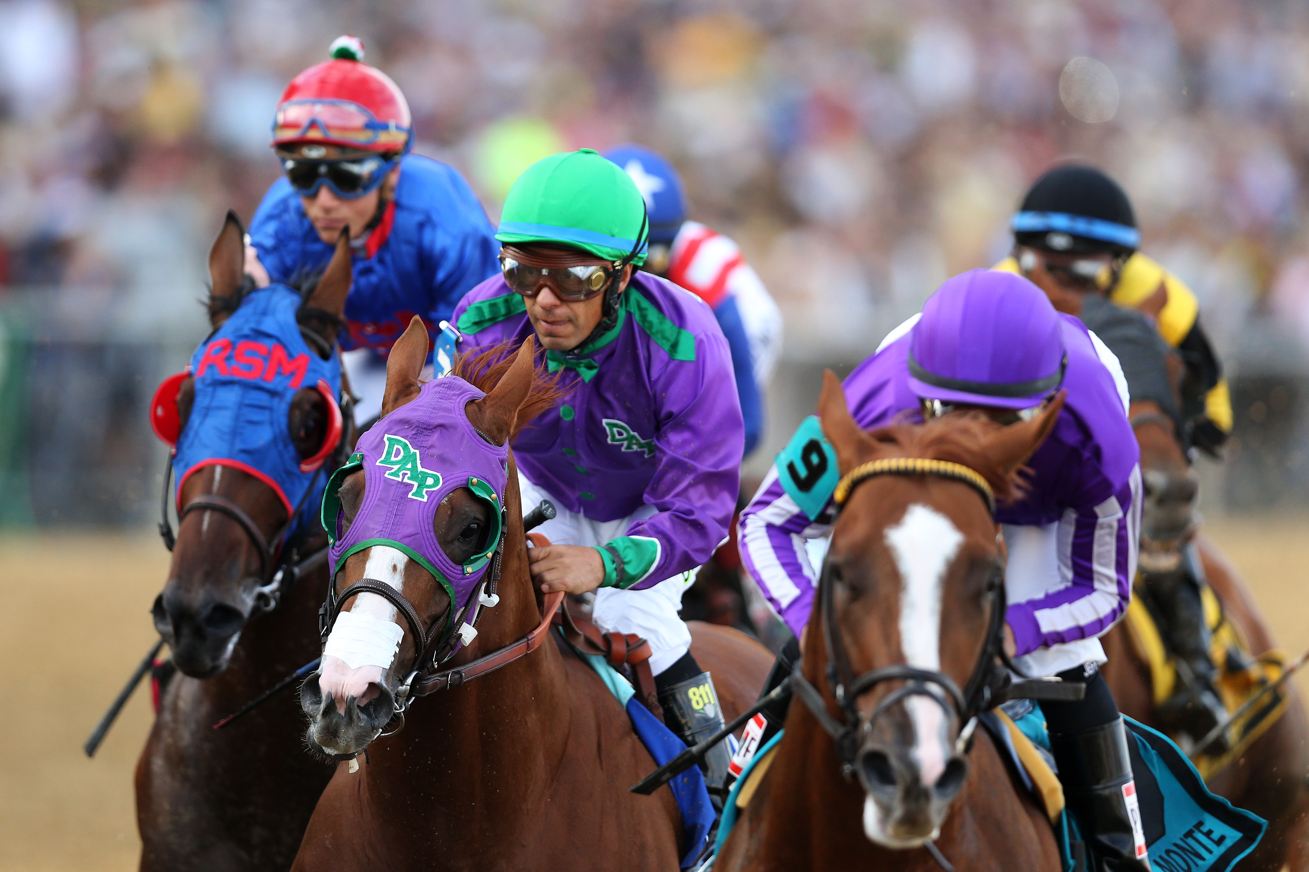 California Chrome heads toward victory in the Preakness States at Baltimore's Pimlico Race Course. Disputed nasal strip is visible just above Chrome's nostrils. (Matthew Stockman/Getty Images)