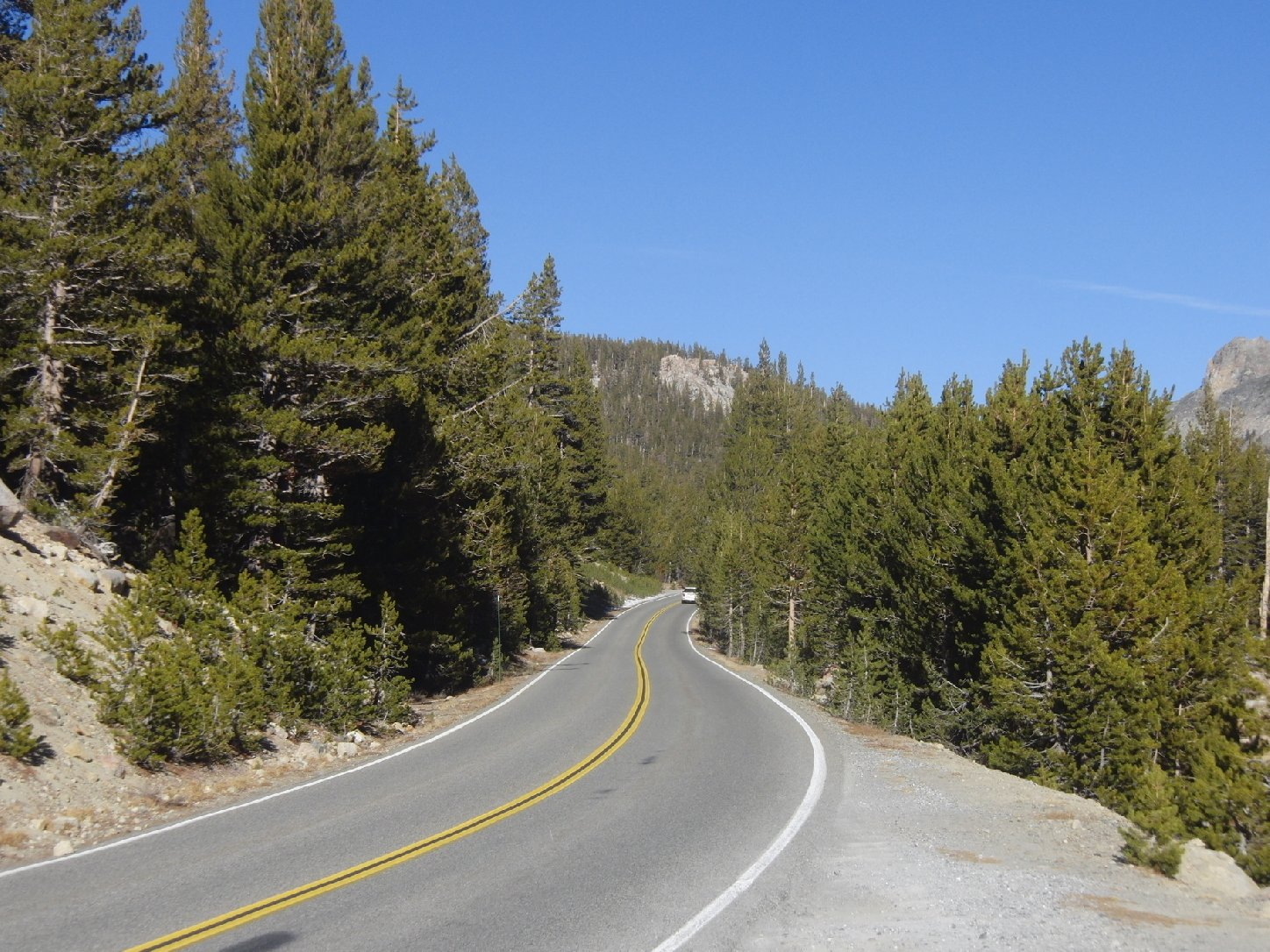 A snowless Tioga Road in January 2012. (Dan Brekke/KQED)
