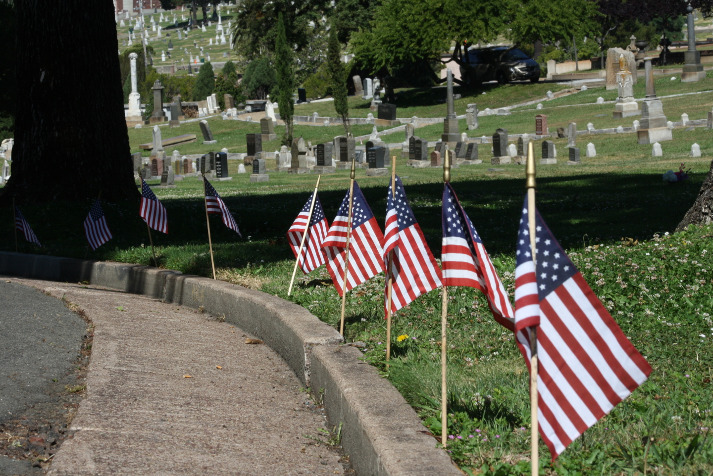 Flags line the path to a Memorial Day ceremony at Mountain View Cemetery in Oakland on May 26, 2014. (Alex Emslie/KQED)