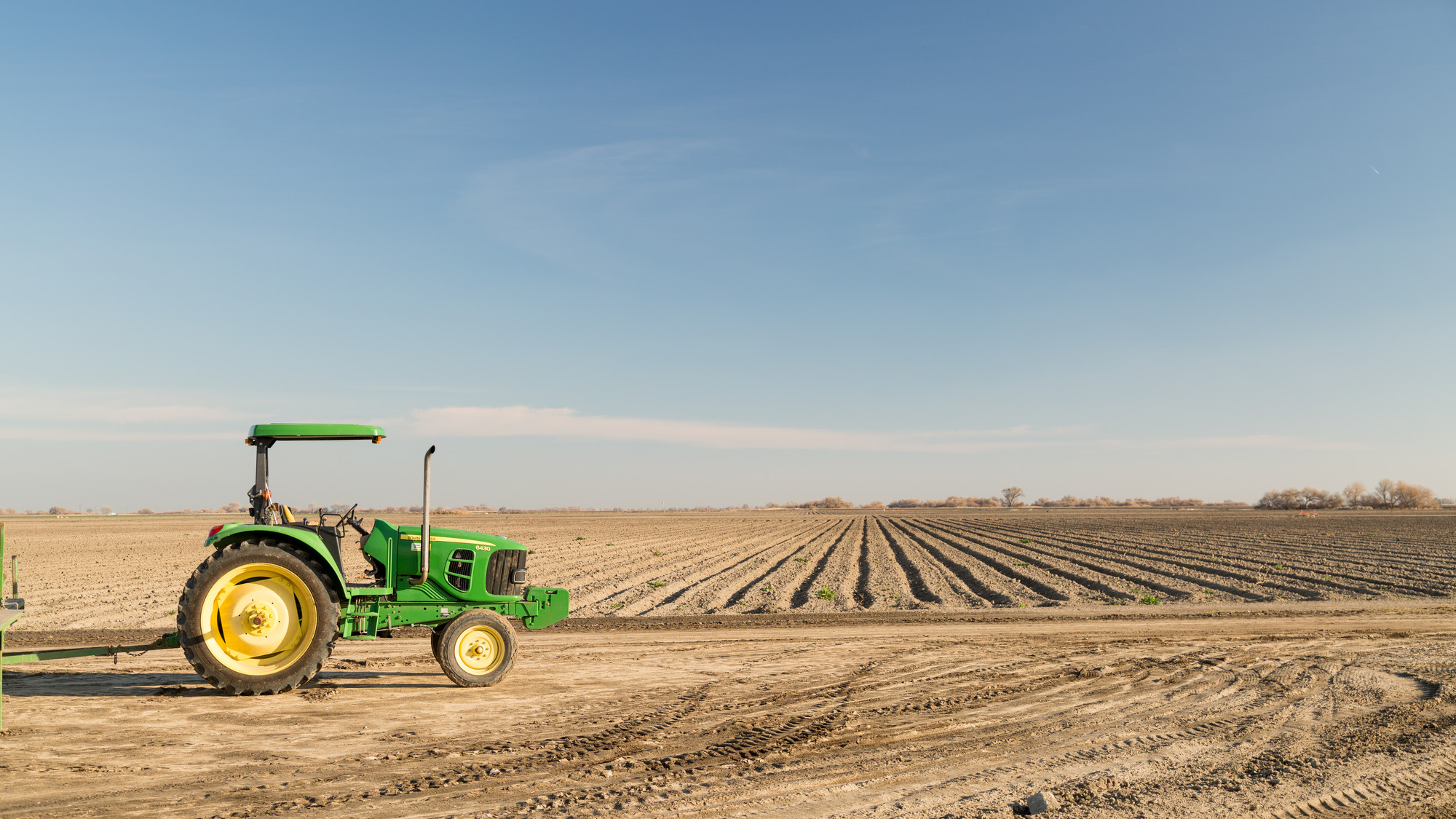 A field near Los Banos, in the San Joaquin Valley. (Josh Cassidy/KQED)