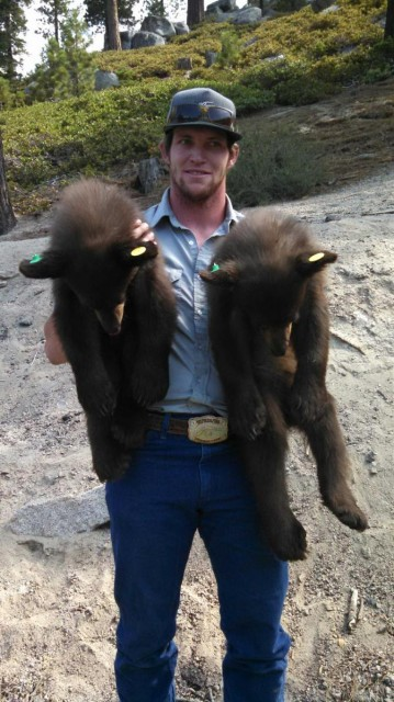 Nevada Department of Wildlife Conservation Aide Cooper Munson holds two of three black bear cubs captured and safely released on Wednesday. (Photo courtesy of NDOW)