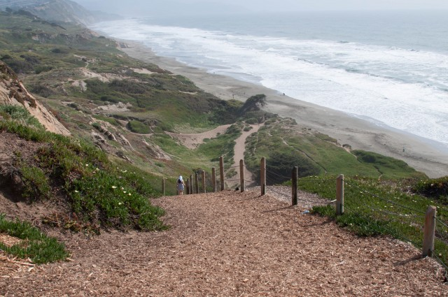 The trails at Fort Funston are a favorite among dog owners. (Miroslav Zdrale/Flickr)