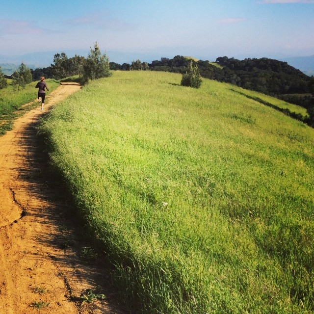 On a run near Mount Diablo. (Lisa Pickoff-White/KQED)