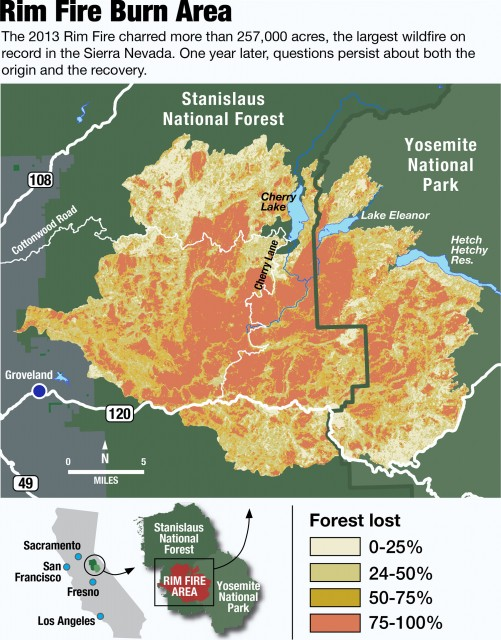 RIm Fire Graphic (David Pierce/KQED)