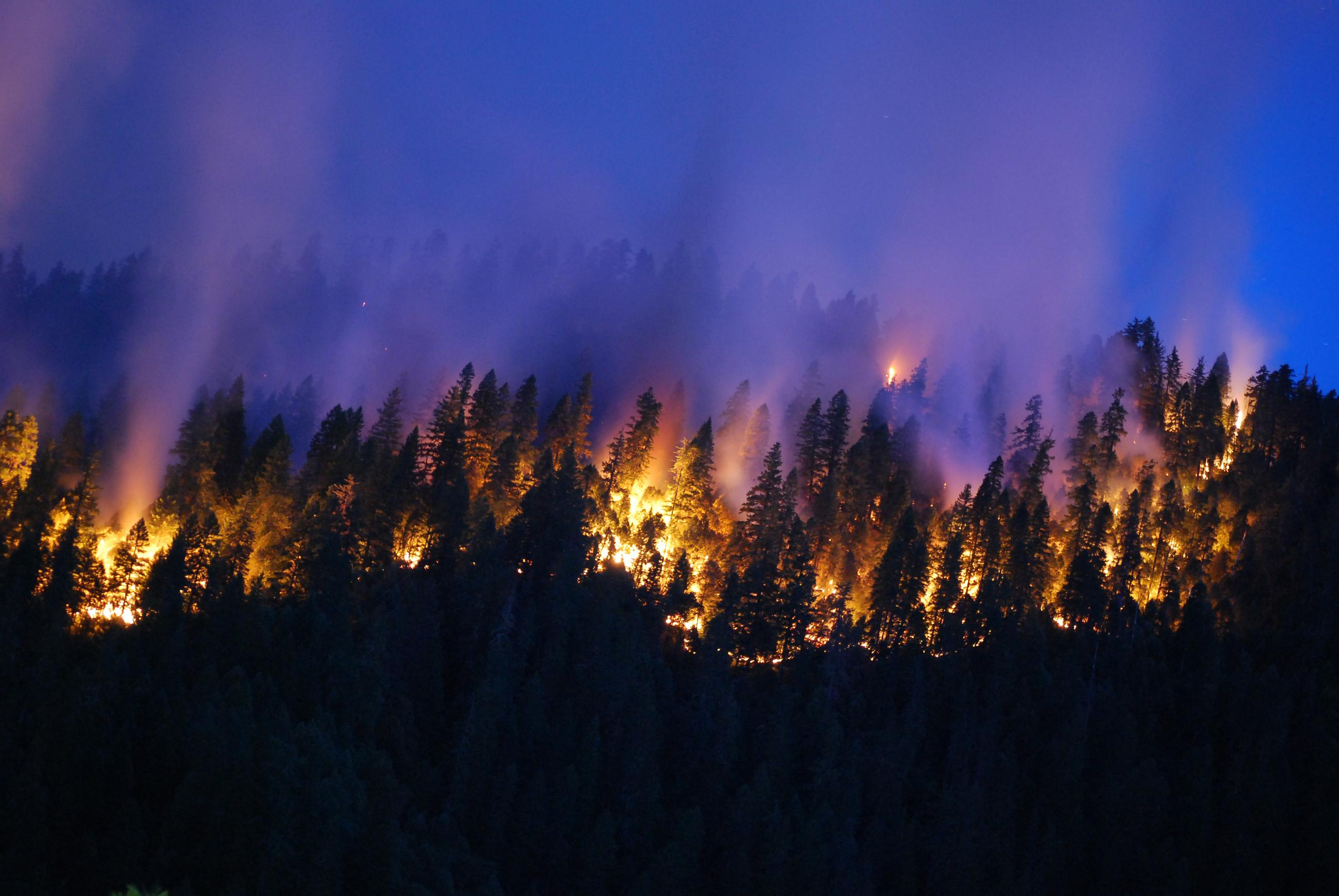 A night view of the Happy Camp Complex fire, burning in Klamath National Forest east of Crescent City. (U.S. Forest Service)