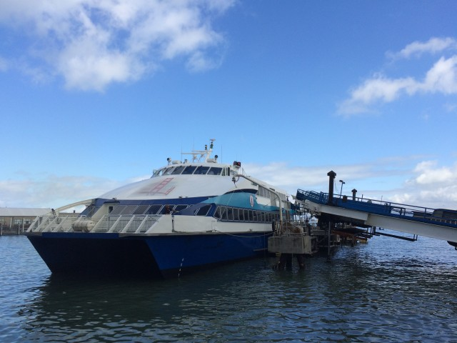 Average weekday ridership on the Golden Gate ferries is about 7,500, the transportation district says. (Bryan Goebel/KQED)