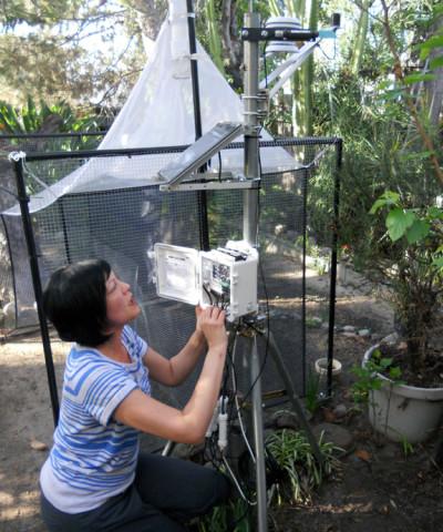 Natural History Museum entomologist Lisa Gonzalez adjusting a trap near the L.A. River in the backyard of study participant John Rodriguez. (Alex Schmidt/KQED)