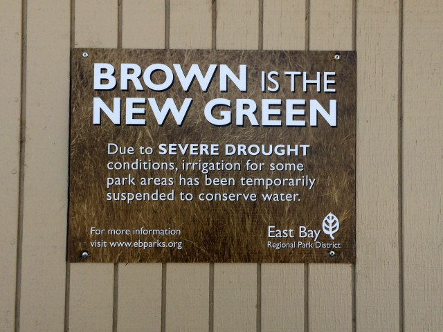 "The East Bay Regional Park District implemented its ""brown is the new green"" policy in response to the drought. (Aaron Mendelson/KQED)"