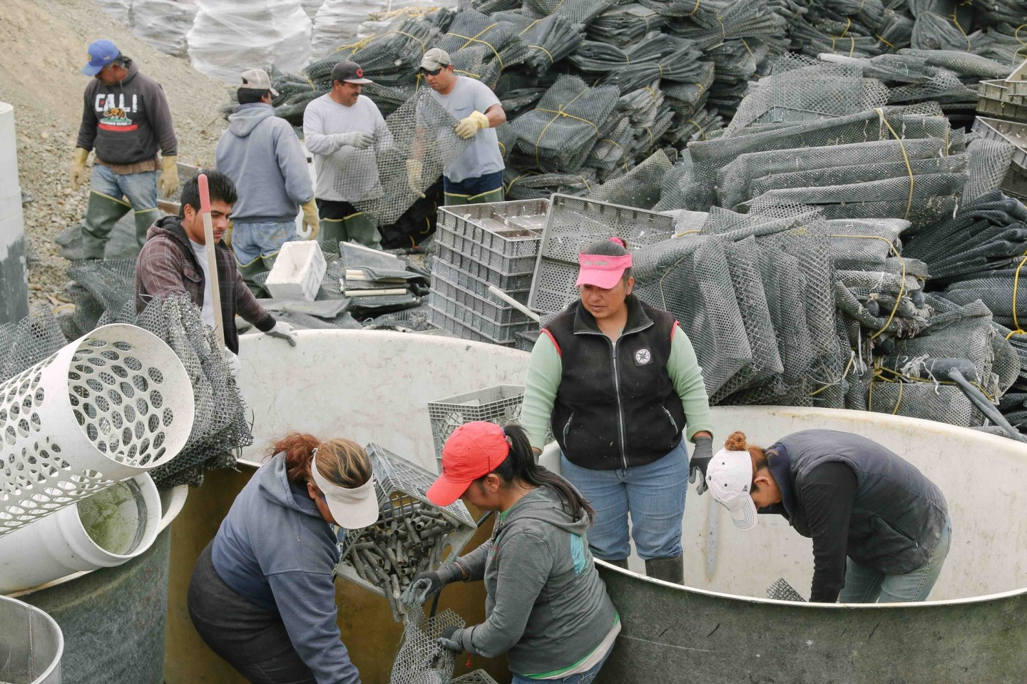 National Park Service, Drakes Bay Oyster Co. Announce Exit Agreement