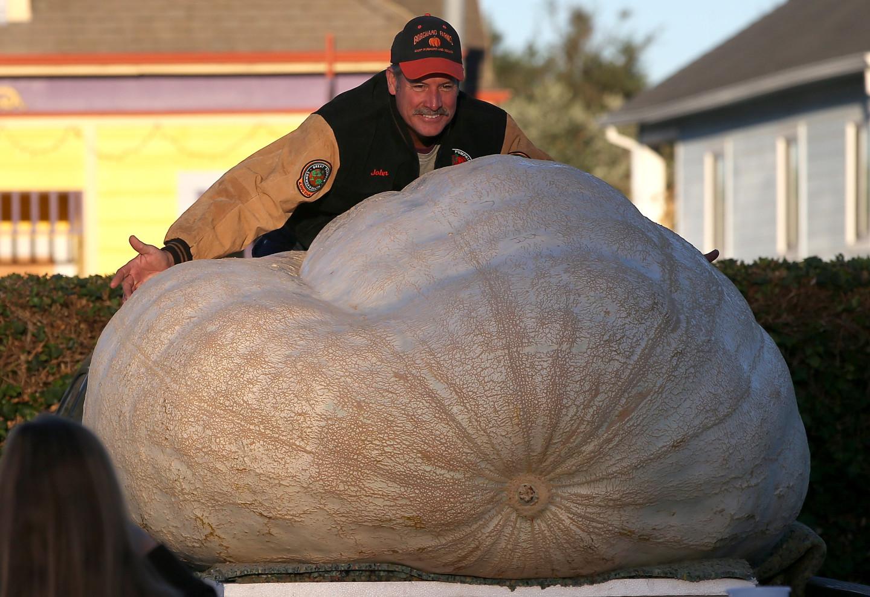 John Hawkley with his big, big pumpkin. (Justin Sullivan/Getty Images)