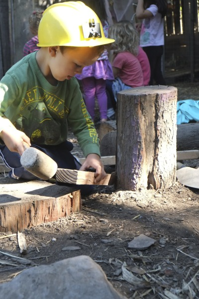 A 3-year-old conducts on experiment, testing his theory on which tools are best to strip bark off tree rounds. (Liana McCormick/Berkeley Forest School)