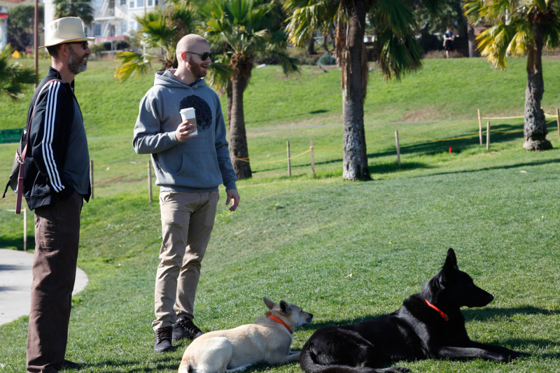 Grant Christopherson (Right), 33, and Robert Morris (Left), 41, play with their dogs Oliver and Ocho at Dolores Park. (Katie Brigham/KQED)