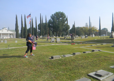 Marina Chardukian and other volunteers put flags out for Veteran's Day. (Alice Daniel/KQED)