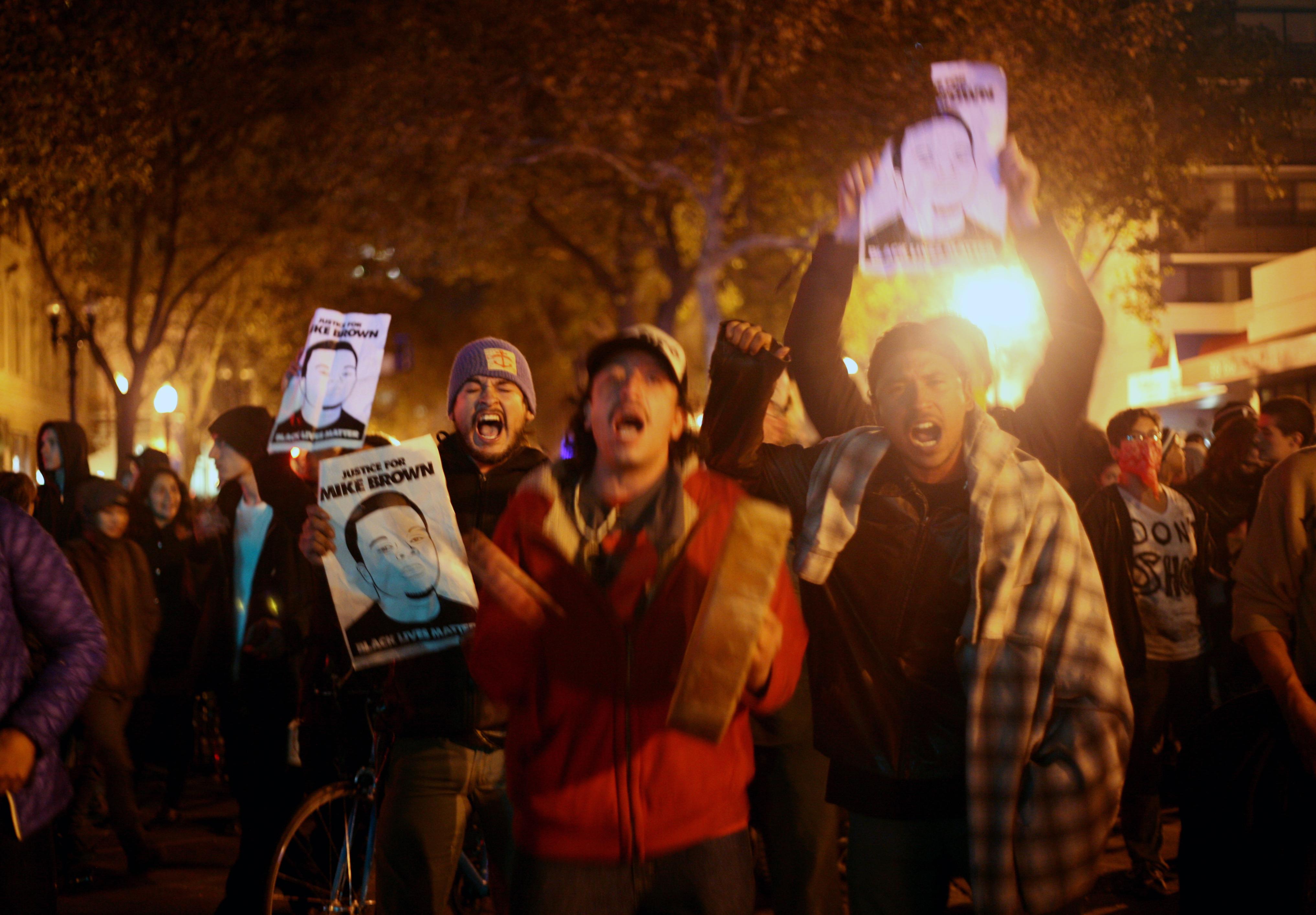 Oak-protesters