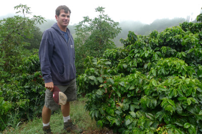 Jay Ruskey of Good Land Organics partnered with UC Cooperative Extension and is growing coffee commercially in Goleta, California. (Lisa Morehouse/KQED)