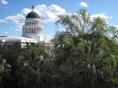 The state Capitol in Sacramento is beckoning a surprising number of newcomers. (Craig Miller/KQED)