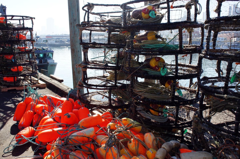of crab season looked in 2013 in San Francisco. (Lauren Sommer/KQED