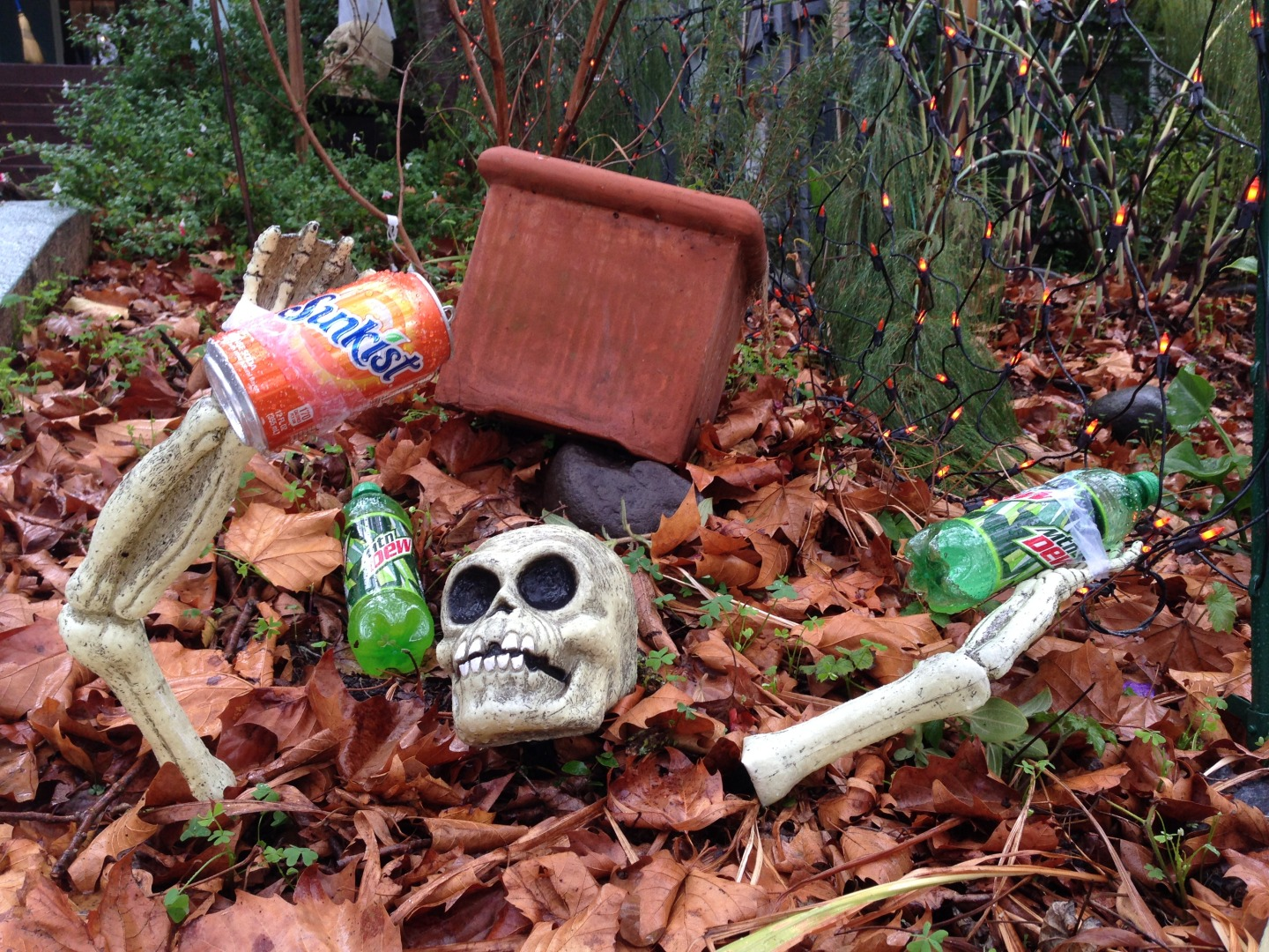Support for the soda tax was widespread in Berkeley, even in Halloween displays. (Patricia Yollin/KQED)