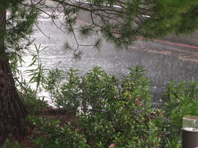 Actual rain, as seen in Vallejo in October. (Craig Miller/KQED)