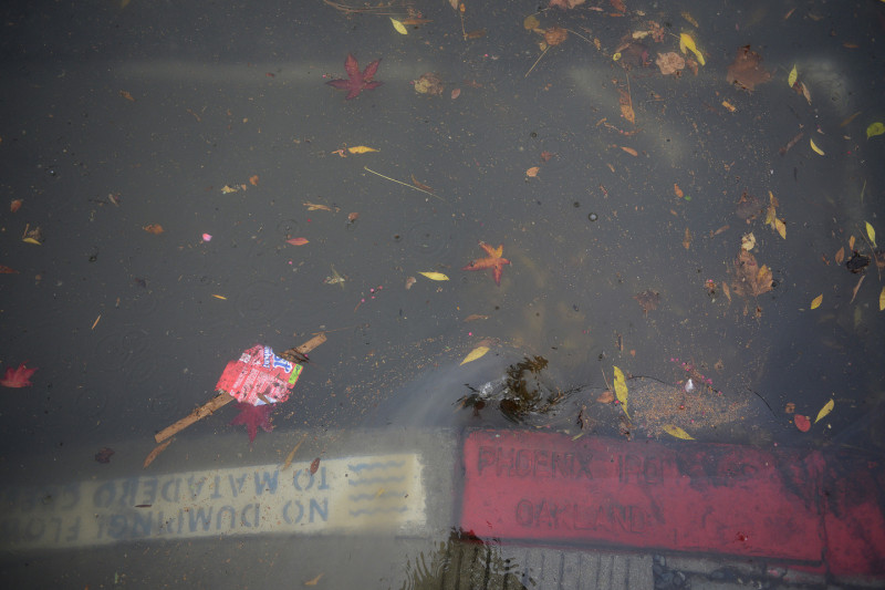 Leaves and other debris flow through the streets in Palo Alto, Thursday morning. (James Tensuan/KQED)