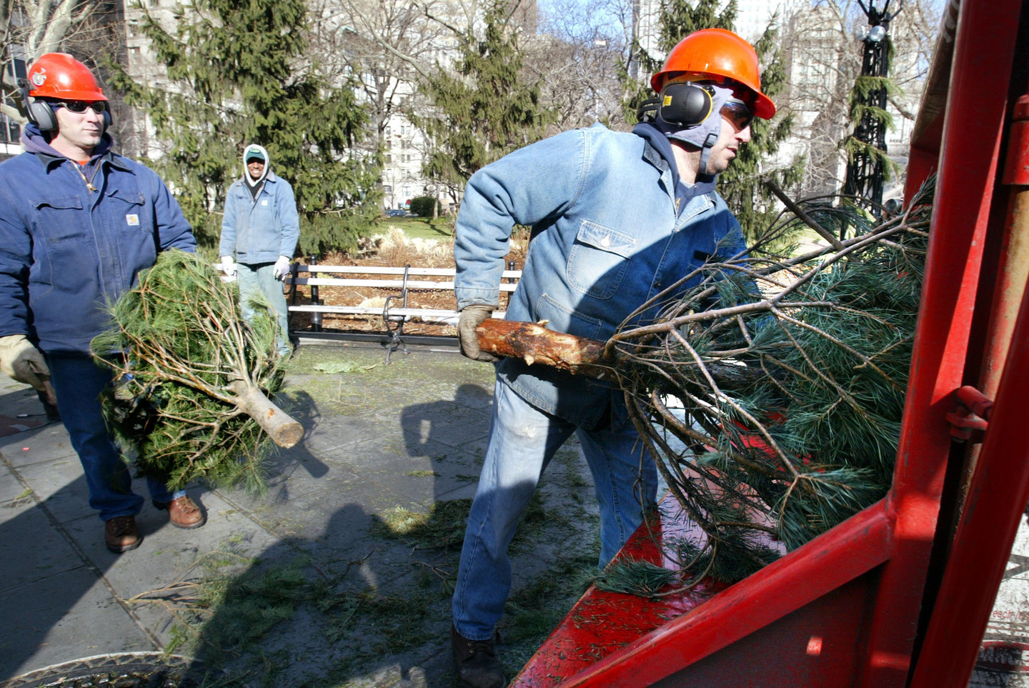 Where to Recycle or Compost Your Christmas Tree in the Bay Area