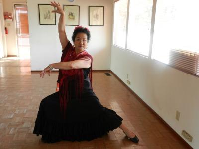Maria Howard in her Santa Rosa studio.