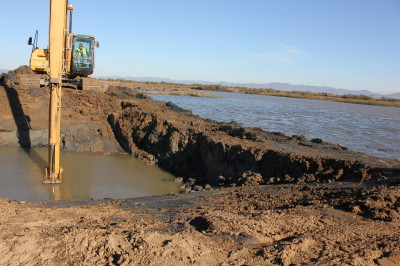 Bay waters flow into former farmlands as part of a tidal marsh restoration effort at San Pablo Bay National Wildlife Refuge.