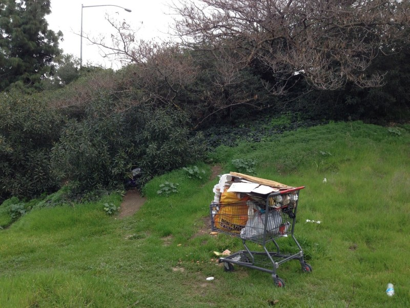 Where you see a shopping cart packed with possessions, there's probably a homeless person nearby, and probably an encampment. Behind this cart, back in the bushes, there are signs somebody is living in the greenery by a freeway off-ramp.